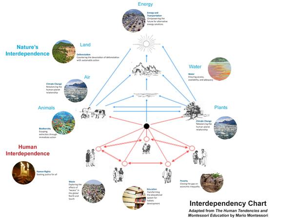 Interdependency Chart